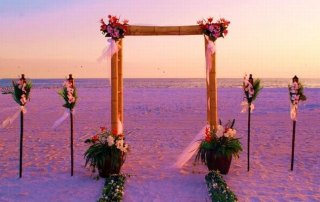 bambook_wedding_arch