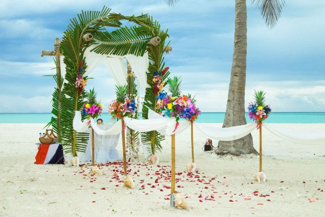 tropic_wedding_arch