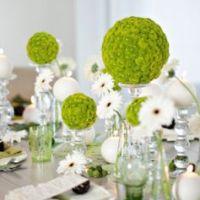 Зеленое оформление свадьбы