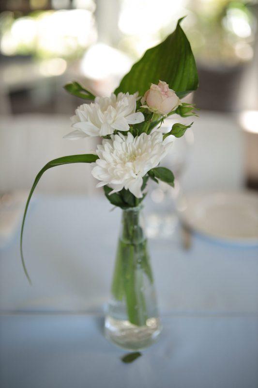 15 июня (кафе Оранжерея)